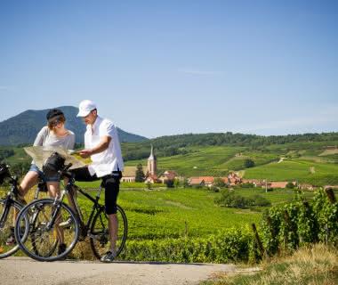 Balade a vélo dans le vignoble